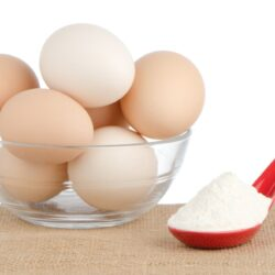 Egg Protein Powder Market