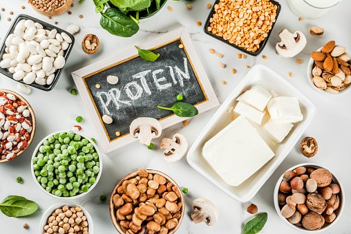 Plant-Based Protein Market