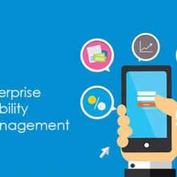 Enterprise Mobility Management Market